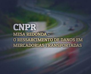 O RESSARCIMENTO DE DANOS EM MERCADORIAS TRANSPORTADAS